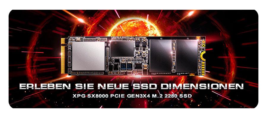 SSD Fesplatte