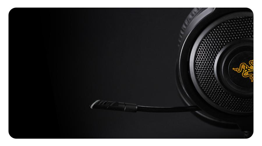 Digitalmikrofon